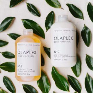 Transform Your Hair with Olaplex